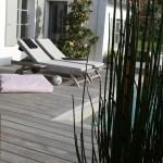 plantes, terrasse, architecte