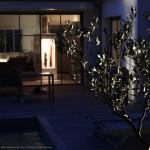 arbre, maison, architecte