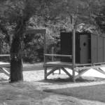 cabane, arbres, île de ré