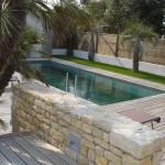 piscine, île de ré, palmier